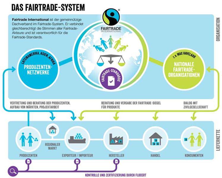 Infografik: Das Fair Trade System